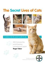 Download the Secret Lives of Cats report here - Cat worming ...