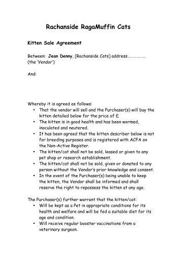 RagaMuffin kitten sale contract
