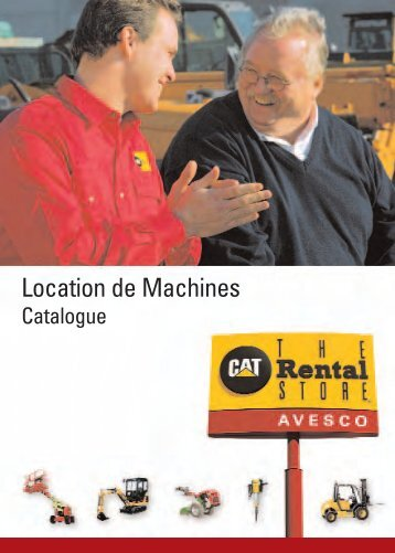 quartino FR - Avesco Rent - The Cat Rental Store