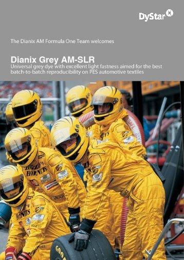 Dianix Grey AM-SLR - DyStar