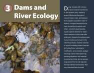 3 Dams and River Ecology - Iowa Department of Natural Resources
