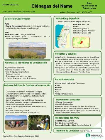Fichas Resumen CELCO Descargar PDF - Arauco