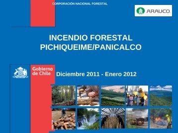 INCENDIO FORESTAL PICHIQUEIME/PANICALCO - Corma Bío Bío