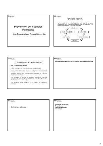 Prevención Permanente de Incendios Forestales - Comité de ...