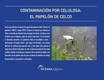 contaminación por celulosa: el papelón de celco - Oceana