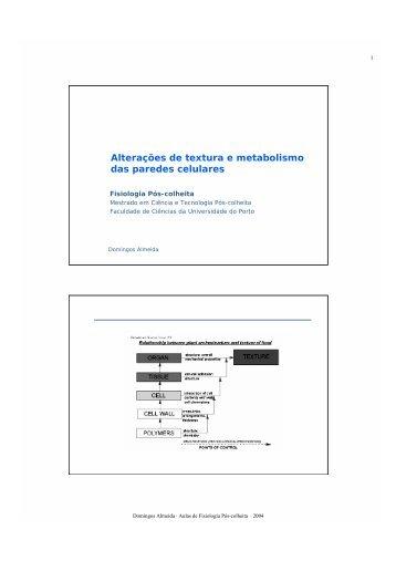 Alterações de textura e metabolismo das paredes celulares