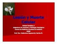 Lesión y Muerte Celular - Facultad de Medicina