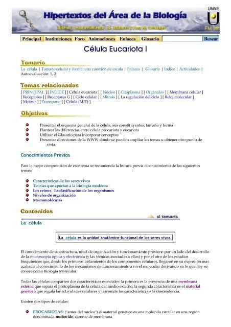 Célula Eucariota I Hipertextos Del área De La Biología