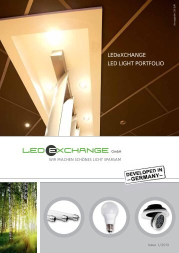 most dynamic led partner 2012 - LEDeXCHANGE