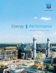 Chevron 2007 Annual Report Supplement