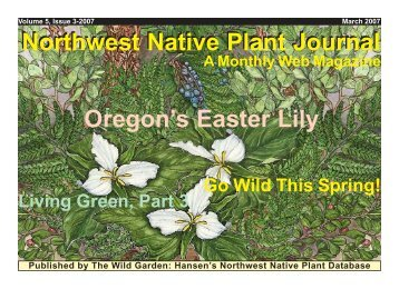 Northwest Native Plant Journal Oregon's Easter Lily - Wallace W ...