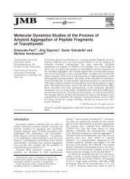 Molecular Dynamics Studies of the Process of Amyloid Aggregation ...