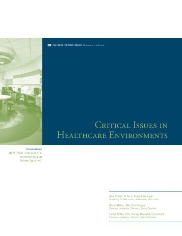 Critical Issues in Healthcare Environments - The Center for Health ...