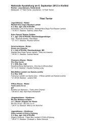 Tibet Terrier Ergebnisse Nationale Ausst. Krefeld 2012