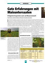 22 Gute Erfahrungen mit Maisuntersaaten Erfolgreiche ... - DSV