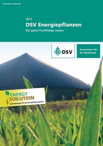 DSV Energiepflanzen - Die ganze Fruchtfolge nutzen 1,84