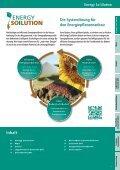 DSV Energiepflanzen - Die ganze Fruchtfolge nutzen 1,84 - Seite 3