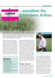 standfest für intensiven Anbau Getreide - DSV