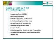 ANSYL ca. S 250 ca. K 260 Der Hochertragsmais - DSV