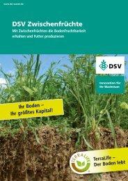 DSV Zwischenfrüchte - Mit Zwischenfrüchten die Bodenfruchtbarkeit ...