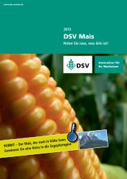 DSV Mais - Holen Sie raus was drin ist
