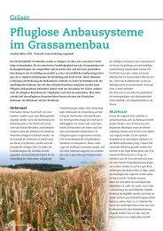 COUNTRY Öko 2206 Moor und frische Lagen 25 kg Weidesamen Grünland Saatgut Bio