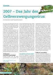 2007 – Das Jahr des Gelbverzwergungsvirus - DSV