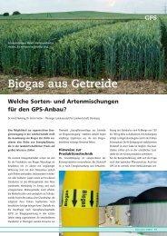 Biogas aus Getreide - DSV