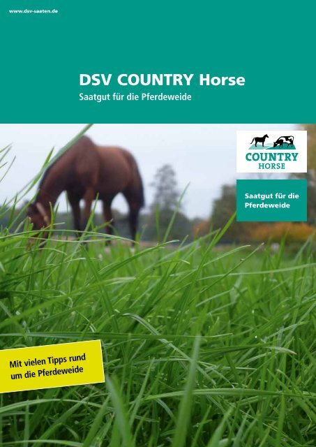 DSV COUNTRY Horse