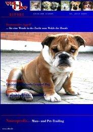 VDHW - Absolut-Hund