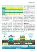 Die organische Frühjahrs düngung richtig berechnen - DSV - Seite 2
