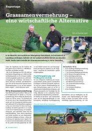 Grassamenvermehrung – eine  wirtschaftliche Alternative - DSV