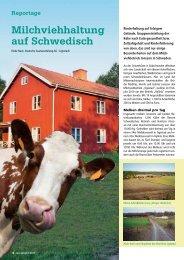 Milchviehhaltung auf Schwedisch - DSV