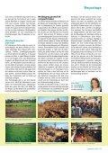 Milchviehhaltung auf Schwedisch - DSV - Seite 2