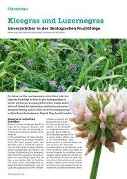 Kleegras und Luzernegras - DSV