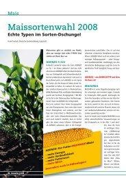 Maissortenwahl 2008 - DSV