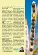 Wie bildet sich das Öl in der Pflanze? - DSV - Page 2