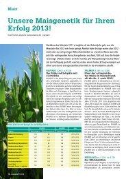 Unsere Maisgenetik für Ihren Erfolg 2013! - DSV