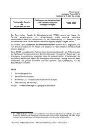 Technische Regeln für Betriebssicherheit TRBS 1201