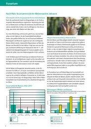 Nach Mais fusariumresistente Weizensorte anbauen - DSV