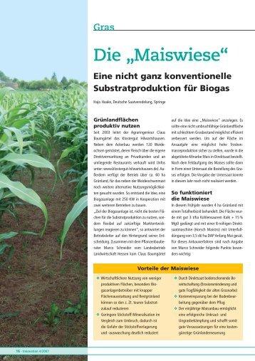 """Die """"Maiswiese"""" - DSV"""