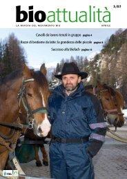Cavalli da lavoro tenuti in gruppo pagina 4 Razze di ... - Bioattualità