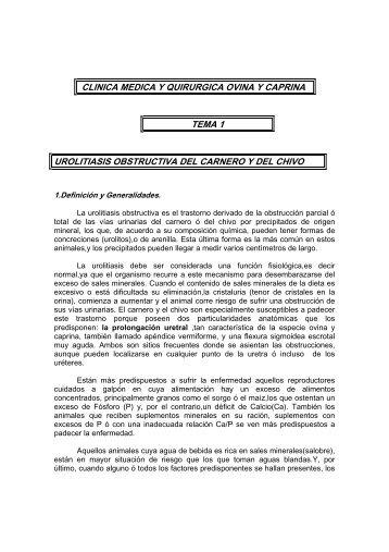 clinica medica y quirurgica ovina y caprina tema - ovinos-caprinos