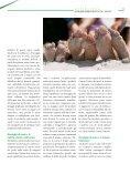 Giocare - Prisma-Online - Page 5
