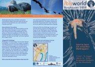 Spiel & Spass mit virtuellen Waldrappen! - Zoo Salzburg
