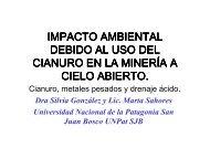IMPACTOS-CIANURO-AGUA-MINA