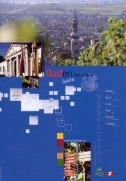 Info-Folder Baden