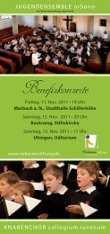 Flyer Benefizkonzerte Herbst 2011 - Riebesamstiftung