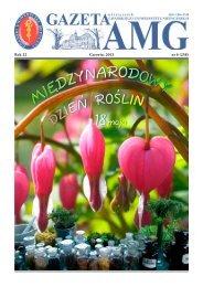 Rok 22 Czerwiec 2012 nr 6 (258) - Gazeta AMG - Gdański ...