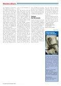 Ein Heiliger mit Ketten Ein Heiliger mit Ketten - Rheinkiesel - Seite 5